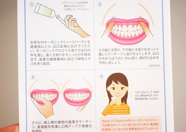 歯茎マッサージ 方法
